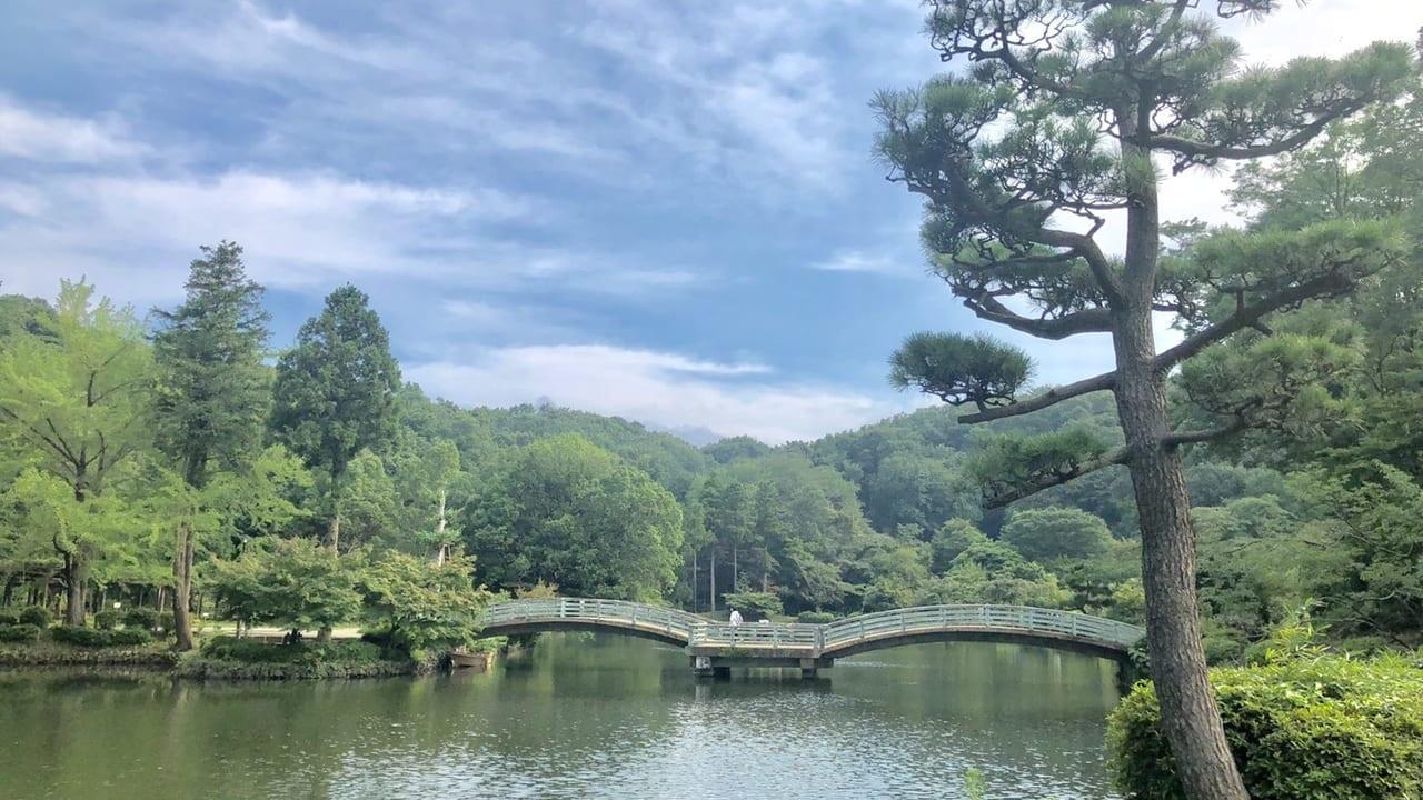 薬師池公園と夏空